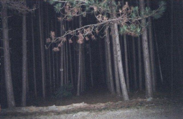 freetown les spojene staty