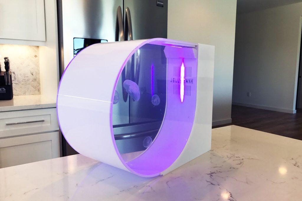 akvarium pre meduzy