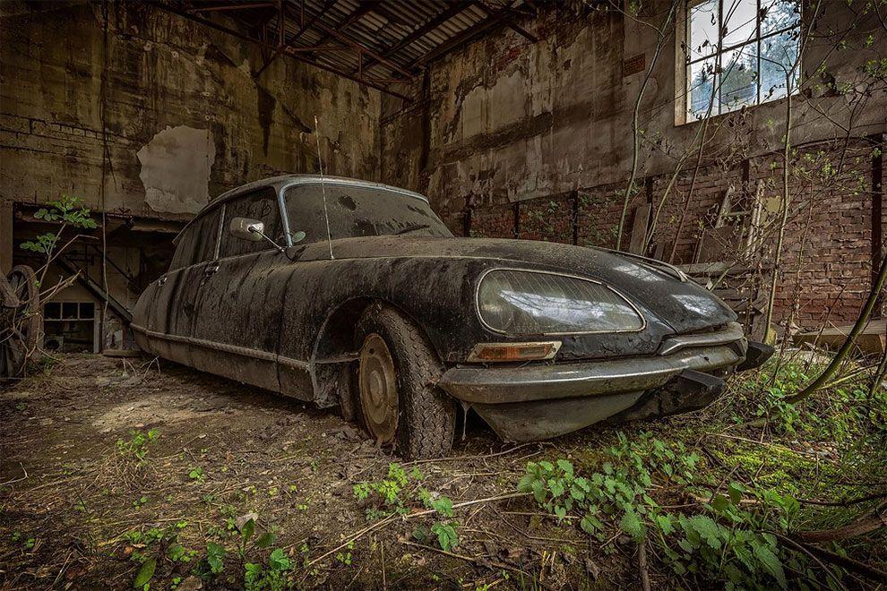 staré hrdzavé automobily ktore obklopuje jemna krasna priroda plna zelene a prirodzenej krasy