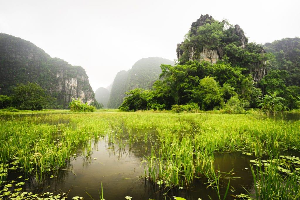 Zeleny Vietnam uzasna sceneria